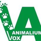 Stowarzyszenie  Vox Animalium-Pro-Animal Association - awatar