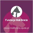 Fundacja Mali Bracia - Opole - awatar