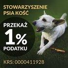 """Stowarzyszenie """"Psia Kość"""" - awatar"""