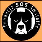 Fundacja SOS-Amstaffy - awatar