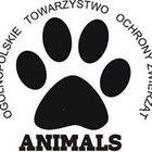 OTOZ Animals Schronisko w Tczewie - awatar