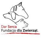 DAR SERCA Fundacja Dla Zwierząt - awatar