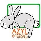 Fundacja Azyl dla Królików - awatar