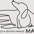 Fundacja w Obronie Zwierząt MAJA - awatar