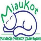 Fundacja Pomocy Zwierzętom Miaukot - awatar