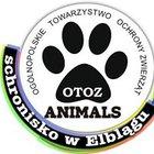 OTOZ Animals Schronisko w Elblągu - awatar