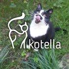 Fundacja Kotella - awatar