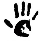 Fundacja Człowiek Dla Zwierząt - awatar