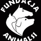 """Fundacja """"Animalsi"""" - awatar"""