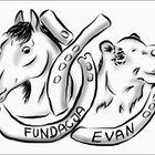 Fundacja Evan - awatar
