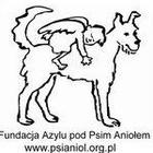 Fundacja Azylu pod Psim Aniołem - awatar