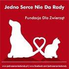 Fundacja Dla Zwierząt Jedno Serce Nie Da Rady - awatar