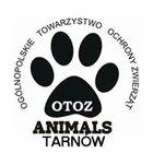 OTOZ Animals - Inspektorat w Tarnowie - awatar