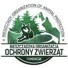 Fundacja Bieszczadzka Organizacja Ochrony Zwierząt - awatar