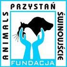 Fundacja Animals Przystań Świnoujście - awatar