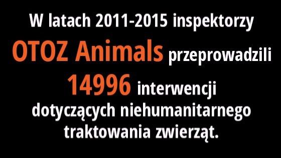 Zdjęcie opisu zbiórki Zestaw reanimacyjny dla zwierząt