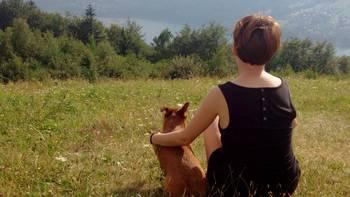 Zbiórka Domek dla zwierząt - miniaturka zdjęcia