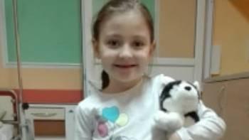 Zbiórka Amelko wracaj do zdrowia - miniaturka zdjęcia