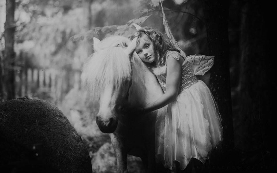 Zbiórka Życie dla 100 terapeutów, koni. - zdjęcie główne
