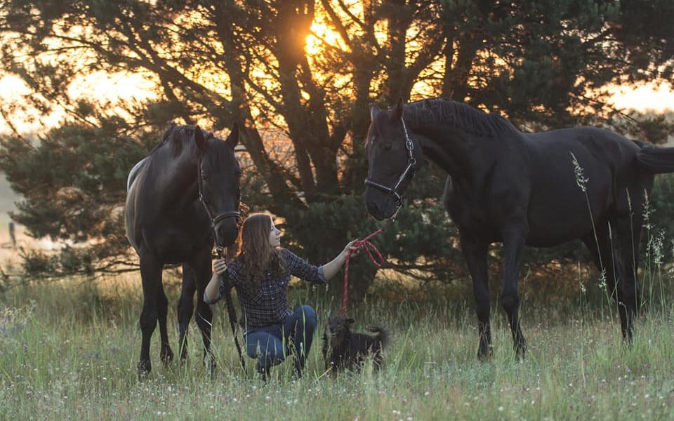 Zbiórka Otul konie zmarłej Magdy - zdjęcie główne