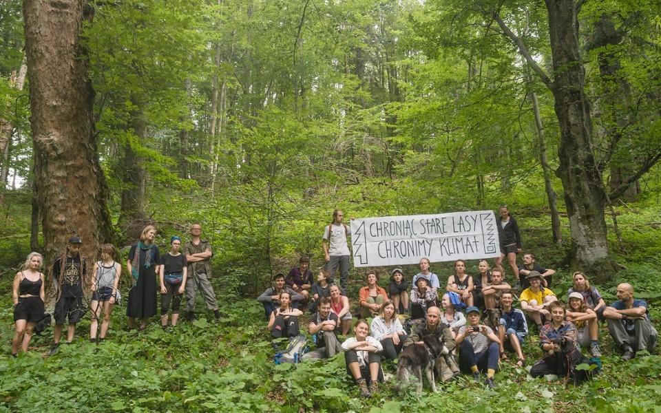 Zbiórka Dzikie Karpaty - pomoc prawna - zdjęcie główne