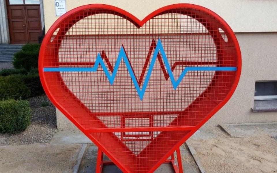 Zbiórka Serce dla SOSW Trzcianka - zdjęcie główne