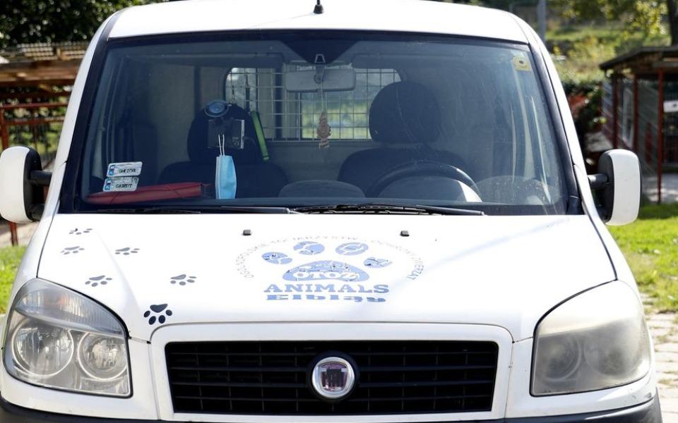 Zbiórka Samochód dla schroniska PILNE - zdjęcie główne