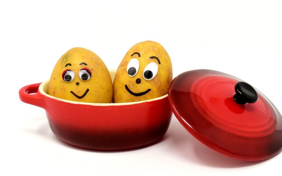 Zbiórka Zawieszone ziemniaki 3. transp - zdjęcie główne