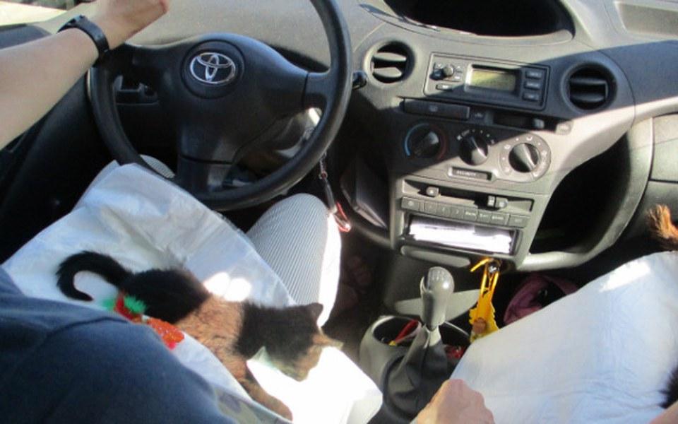 Zbiórka Samochód ratujący życie !!! - zdjęcie główne