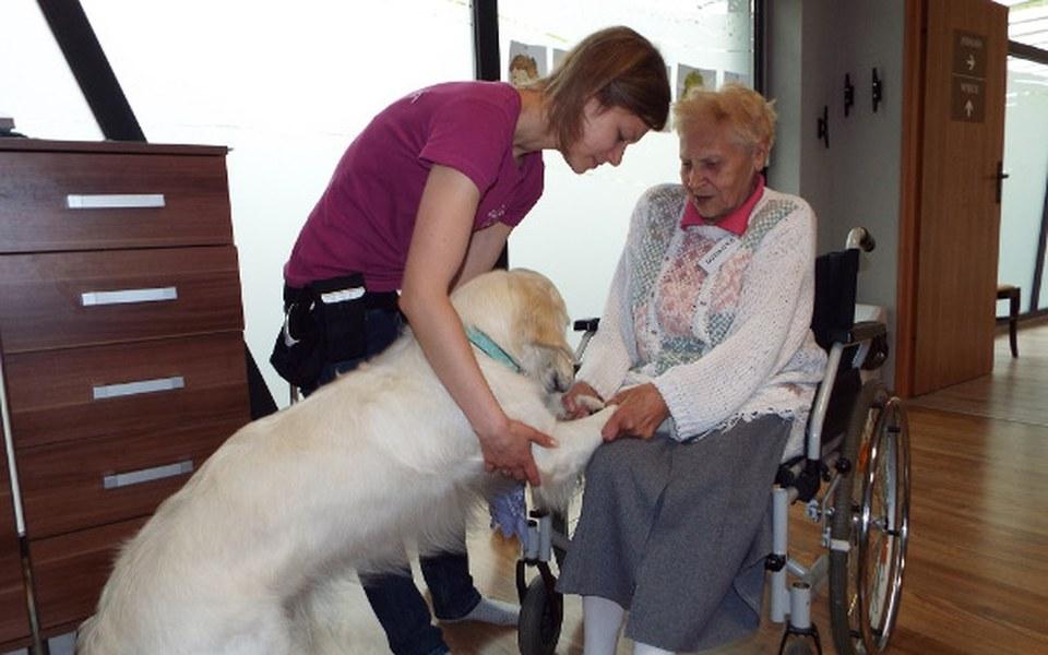Zbiórka Opieka w Dziennym Domu Seniora - zdjęcie główne