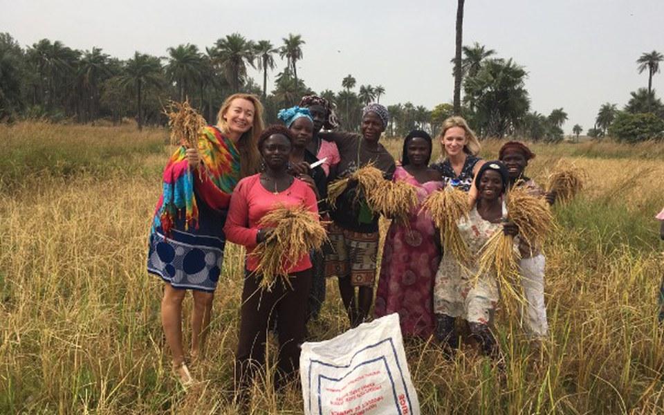 Zbiórka Gambijskie kobiety i dzieci - zdjęcie główne