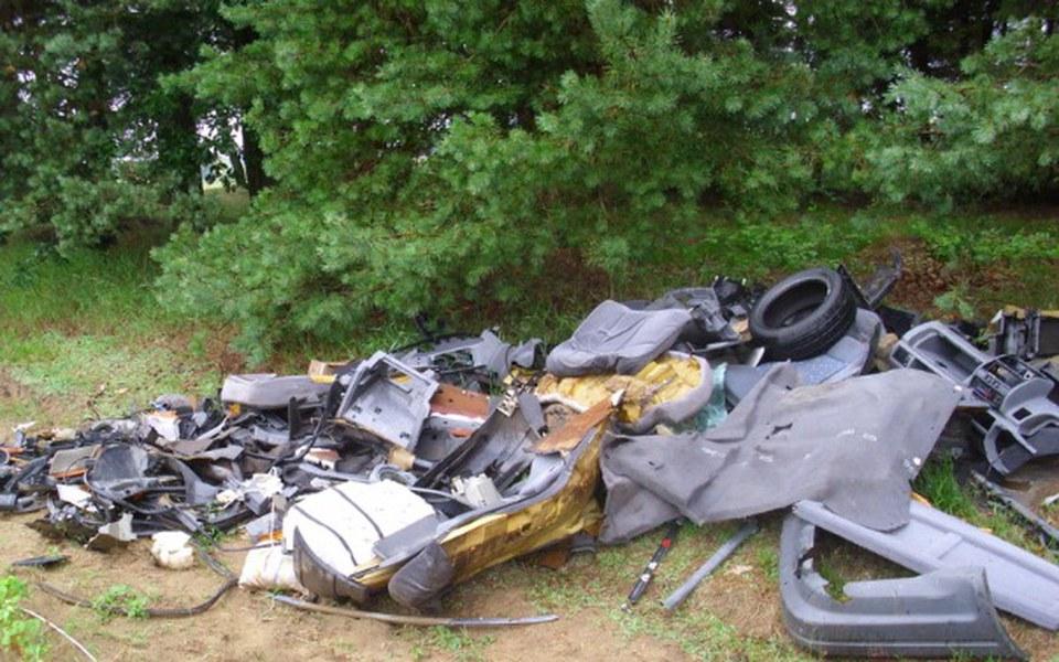 Zbiórka Sprzątanie lasów i okolicy - zdjęcie główne