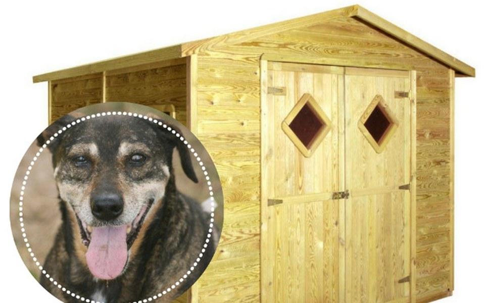 Zbiórka Domek dla seniora z interwencji - zdjęcie główne