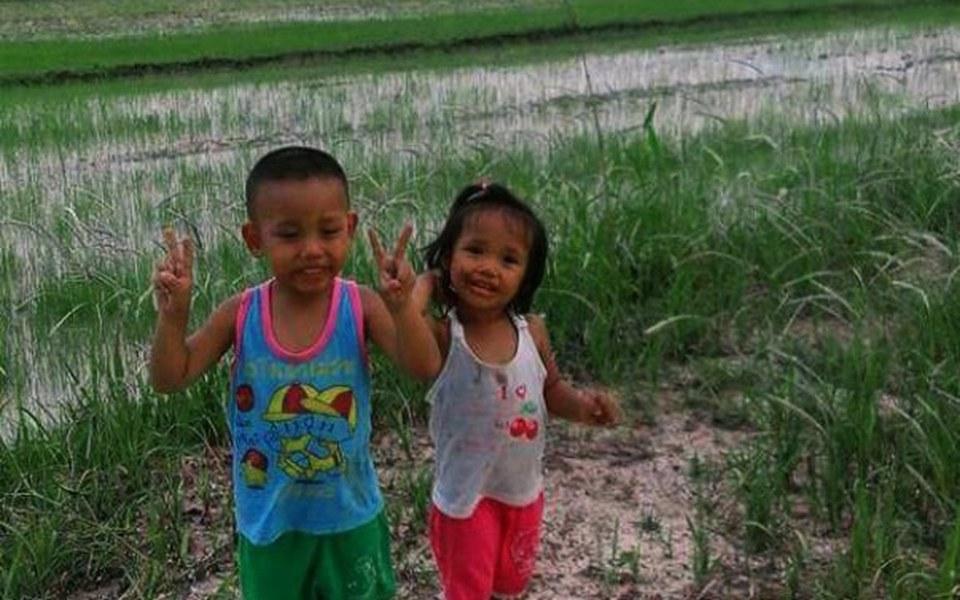 Zbiórka Pomagamy dzieciom z pól ryżowych - zdjęcie główne