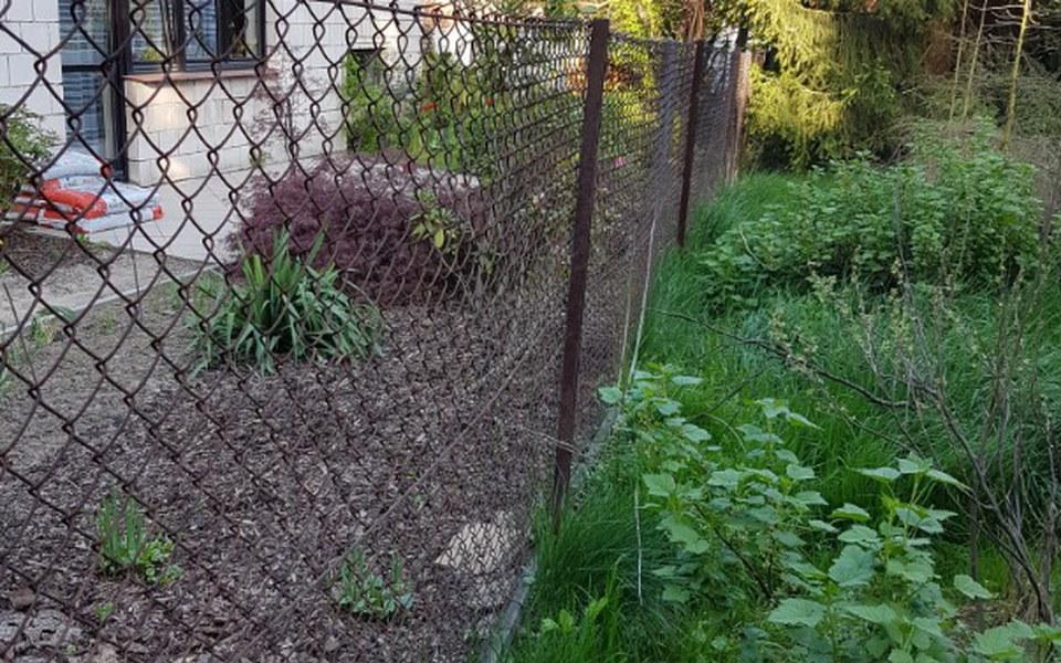 Zbiórka Na ogrodzenie wybiegu dla psów - zdjęcie główne