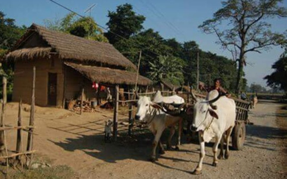 Zbiórka Nepal - pomoc dla południa - zdjęcie główne