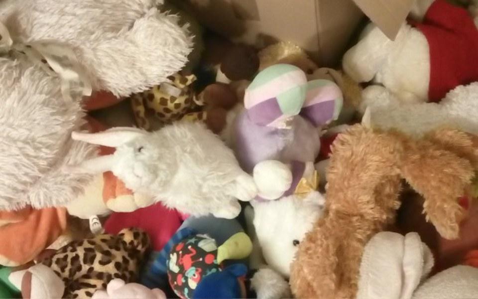 Zbiórka Zabawki na Papuę Nową Gwineę - zdjęcie główne
