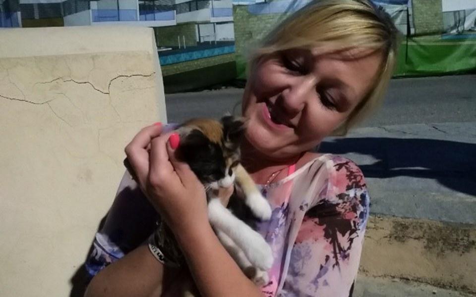 Zbiórka Kociak z Rodos - adopcja. - zdjęcie główne