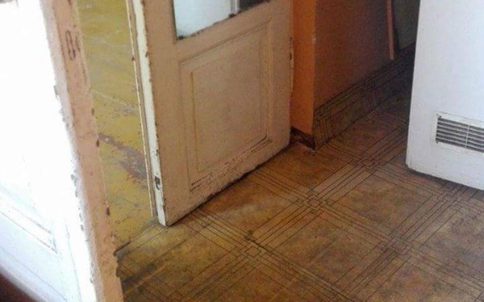 Zbiórka remont domu dla bezdomnych kotów - zdjęcie główne