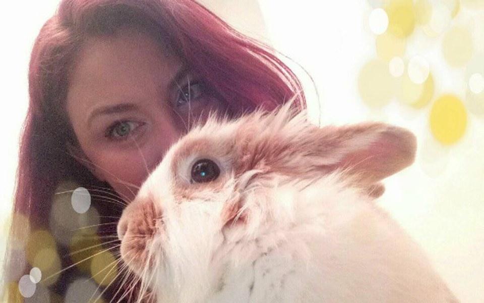 Zbiórka Urodzinowa zbiórka na króliki :) - zdjęcie główne