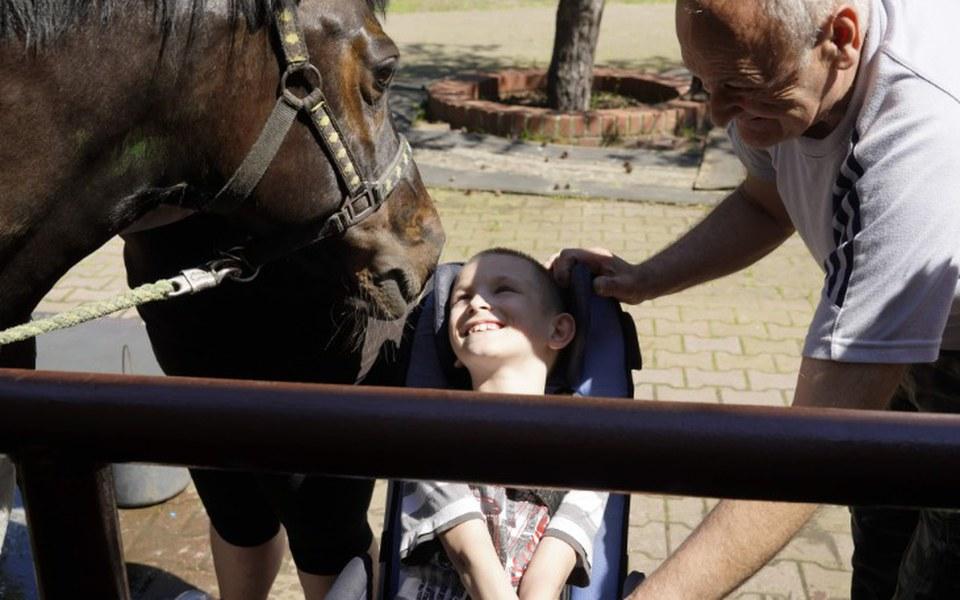 Zbiórka Potrzeby koni i hipoterapii - zdjęcie główne