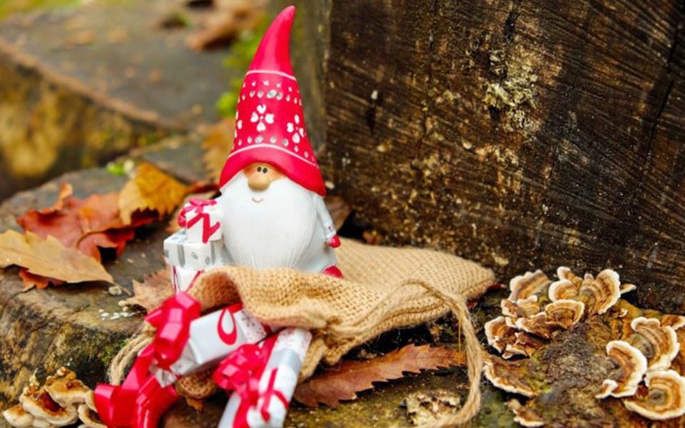 Zbiórka Święta w Domu Małego Dziecka - zdjęcie główne