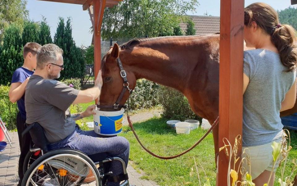 Zbiórka Pomoc w rehabilitacji, leczeniu - zdjęcie główne
