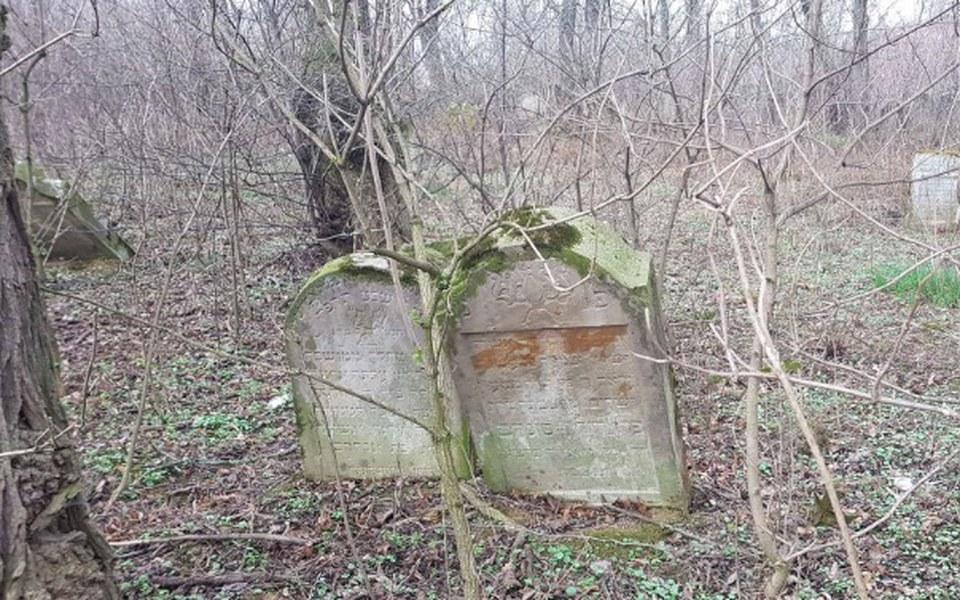 Zbiórka Restore Jewish Cemetery Kanczuga - zdjęcie główne