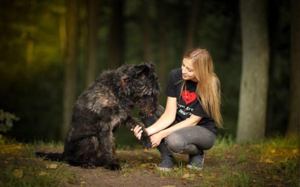 Zbiórka Obroże Foresto dla 180 psów - zdjęcie główne