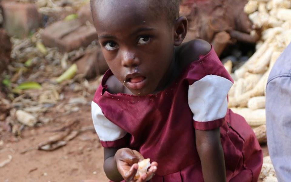 Zbiórka Centrum Dożywiania Dzieci - zdjęcie główne