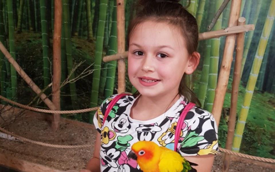 Zbiórka Pompa insulinowa dla córeczki - zdjęcie główne