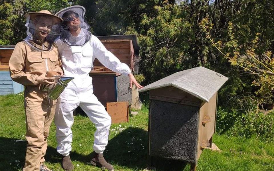 Zbiórka Pszczoły na Mokotowie w ZS nr 39 - zdjęcie główne