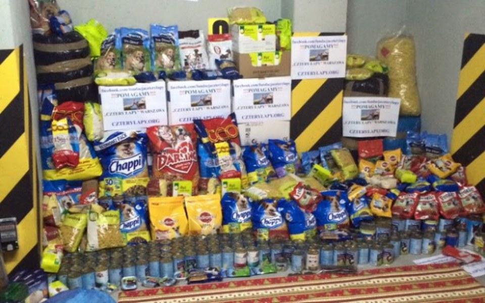 Zbiórka Pomoc dla potrzebujących piesków - zdjęcie główne