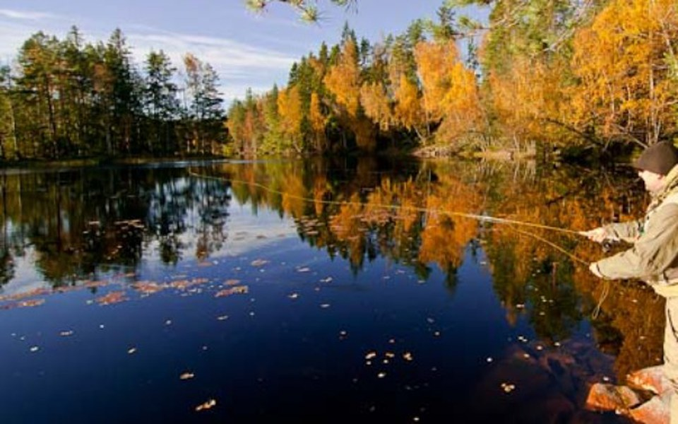 Zbiórka Wyjazd do Szwecji na ryby - zdjęcie główne